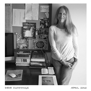 Photo of Interview with Dede Cummings – Founder of Green Writers Press
