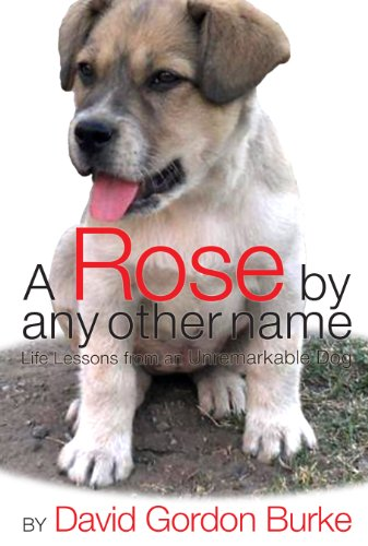 A Rose by Any Other Name: Life Lessons from an Unremarkable Dog